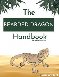 Bd Handbook Cover