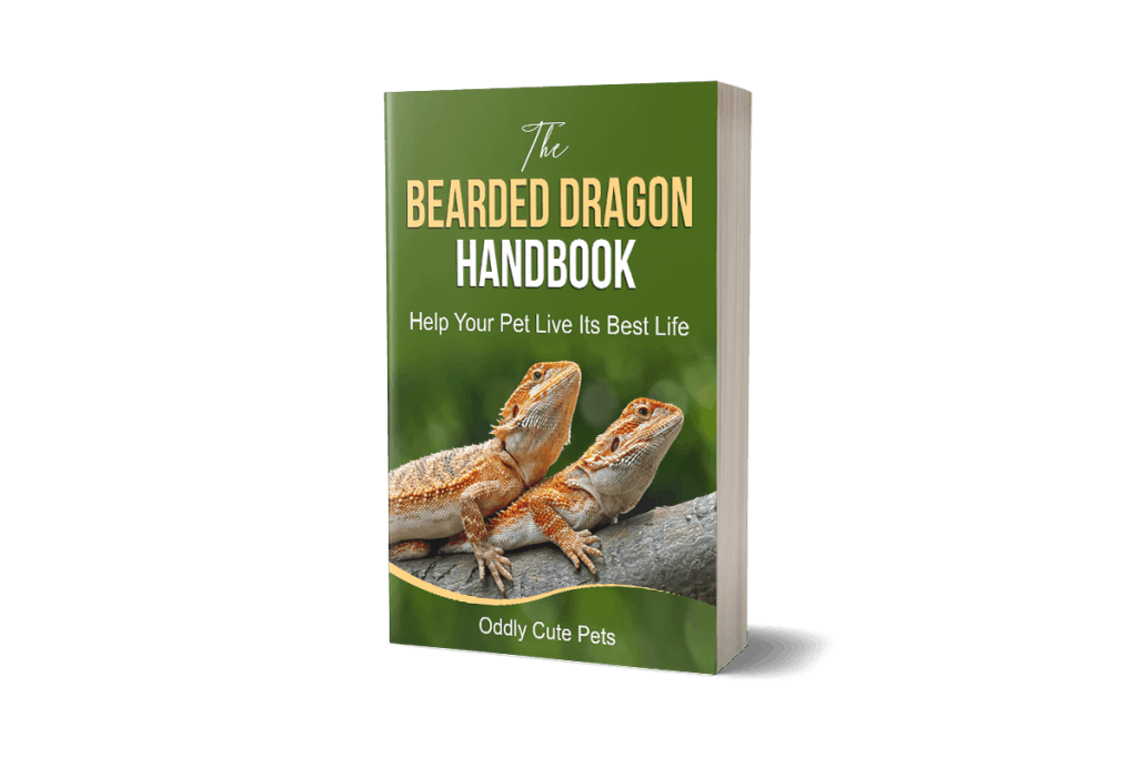 Bearded Dragon Handbook 3d
