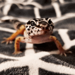 how do lizards lose their tails
