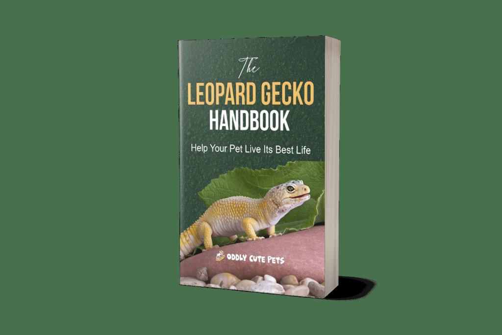Leopard Gecko 3d Book