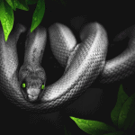 types of pet snakes