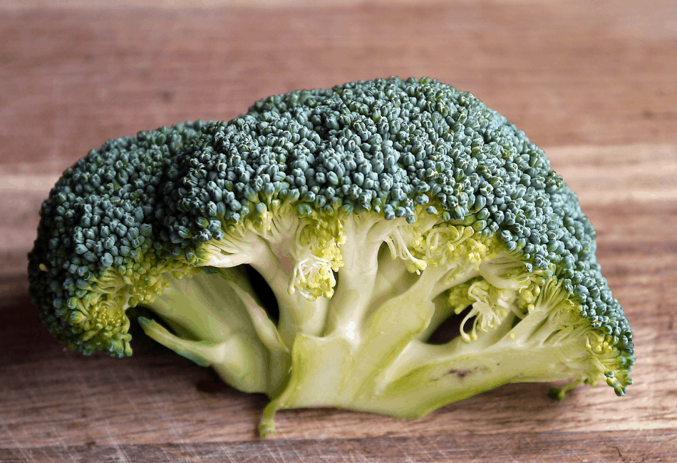 can bearded dragon eat broccoli 3