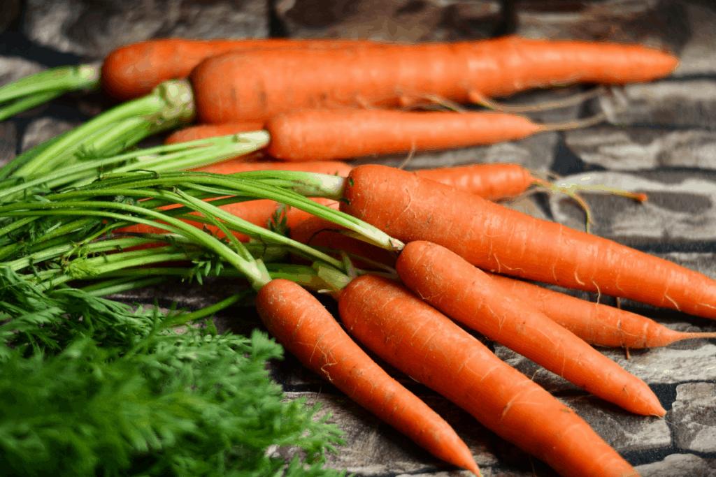 bearded dragon food list carrots