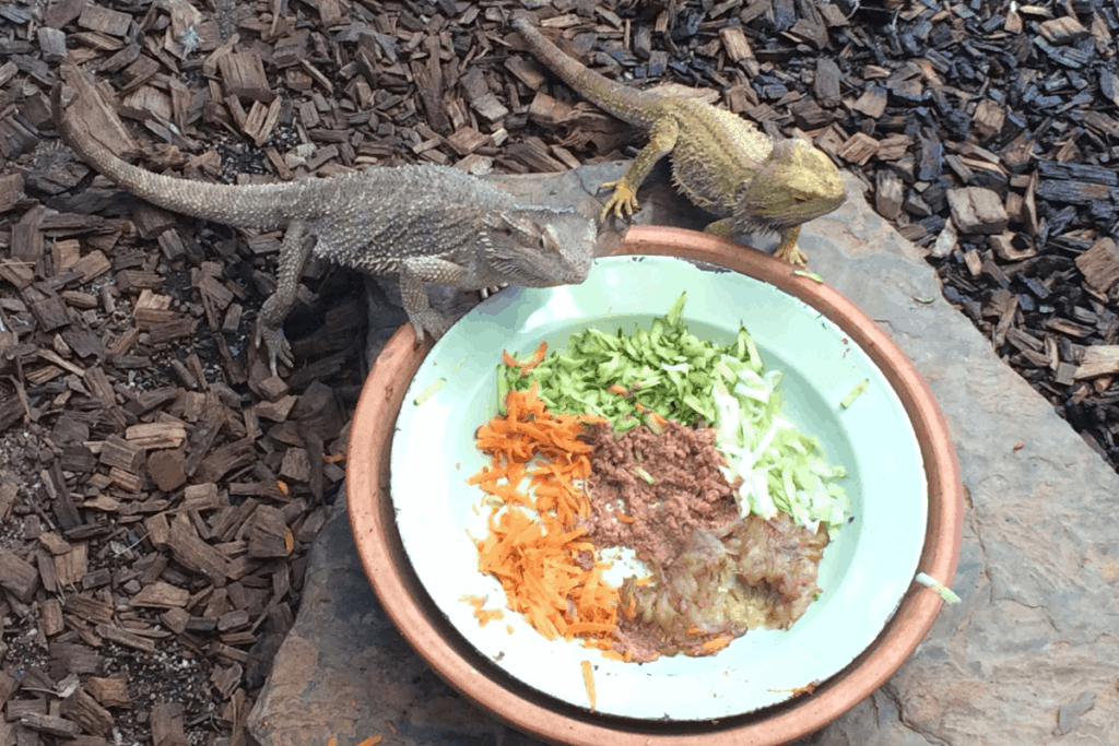 how to get bearded dragons to eat greens